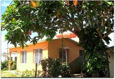 Vista general de la casa. Vinales, Outdoor Decor, Home Decor, Home, Terrace, Fences, Entryway, Cities, Decoration Home