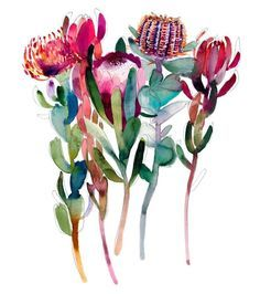 'The Flower Thief' Greeting Card - Natalie Martin Flor Protea, Protea Art, Watercolor Flowers, Watercolor Art, Australian Native Flowers, Botanical Art, Art Floral, Creative Crafts, Art Inspo