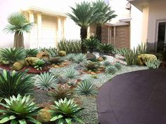Home – Container Water Gardens - New ideas Front House Landscaping, Tropical Landscaping, Modern Landscaping, Backyard Landscaping, Landscaping Ideas, House Landscape, Garden Landscape Design, Vertikal Garden, Desert Backyard