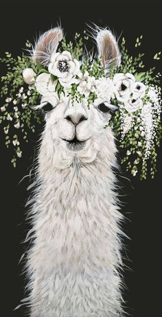 Dolly Llama Printed Canvas Etsy - High Quality Printed Canvas Deep Canvas Producer Description Of Canvas Quality You Can See Durability Image Clarity And Color Accuracy Are Our Top Priority For Canvas Printing Our Inks Are De Alpacas, Animal Paintings, Animal Drawings, Face Paintings, Lama Animal, Llama Arts, Llama Print, Llama Alpaca, Illustration