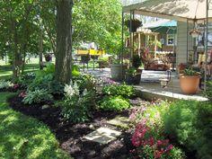 .plants  around patio