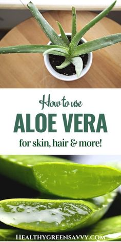 If you're only going to get one houseplant make it an aloe! This incredible plant cleans your air heals your sunburn . Best Nutrition Food, Health And Nutrition, Health And Wellness, Nutrition Articles, Nutrition Products, Nutrition Data, Nutrition Chart, Health Tips, Nutrition Guide