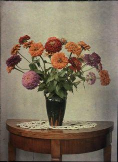 Autochrome par P. Portier