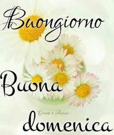 Cettina Buccheri - Google+ Happy Weekend, Happy Sunday, Good Morning Sunshine, Good Morning Quotes, Smiley, Google, Phrases In Italian, Good Morning Wishes, Fantasy