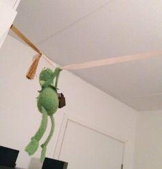 Zip lining kermit Sapo Kermit, Reaction Pictures, Funny Pictures, Funny Kermit Memes, Sapo Meme, Frog Meme, Kermit The Frog, Wholesome Memes, Mood