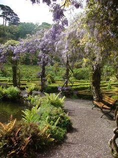 Bantry Gardens, Cork, Ireland.