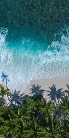 Beautiful beach, aerial view, palm trees, sea, wallpaper - New Ideas Beach Phone Wallpaper, View Wallpaper, Summer Wallpaper, Iphone Background Wallpaper, Nature Wallpaper, Travel Wallpaper, Strand Wallpaper, Iphone Background Beach, Palm Tree Iphone Wallpaper