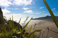 Piha Beach located in Auckland, New Zealand. Paradise Landscape, Sunset Landscape, Forest Landscape, Forest Scenery, Beach Scenery, Beautiful Landscape Photography, Beautiful Landscapes, New Zealand Landscape, Creative Landscape
