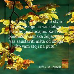 #inspiracija Džek M. Zufelt: DNK uspeha #želje #akcija