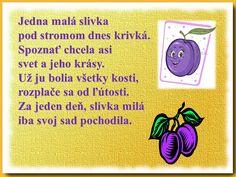 Classroom, Vegetables, Fruit, Speech Language Therapy, Class Room, Vegetable Recipes, Veggies