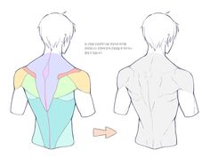 Anatomy Sketches, Body Sketches, Art Drawings Sketches, Body Reference Drawing, Drawing Reference Poses, Anatomy Reference, Human Anatomy Drawing, Anatomy Art, Body Anatomy