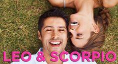 Leo and Scorpio - Compatibility in Sex, Love and friendship