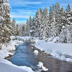Winter Wonderland in South Lake Tahoe, California South Lake Tahoe, Lake Tahoe Winter, Winter Szenen, Winter White, Winter Pictures, Winter Beauty, Beautiful Places, Amazing Places, Beautiful Scenery