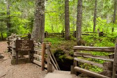 Guler Ice Caves located in the Gifford Pinchot National Forest not far from Trout Lake
