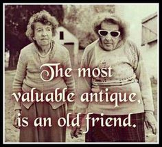 Friend Friendship, Friendship Quotes, Friendship Pictures, Funny Friendship, Great Quotes, Funny Quotes, Inspirational Quotes, Quotable Quotes, Bff Quotes