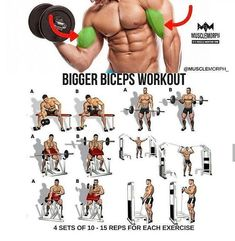 One of the best exercise for pumping biceps is ez barbell curl. It is very effective for pumping our biceps. It gives tension on both short and long heads of the biceps. Big Biceps Workout, Step Workout, Workout Guide, Back And Bicep Workout, Best Exercise For Biceps, Forearm Workout, Diet Exercise, Workout Dumbell, Arm Day Workout