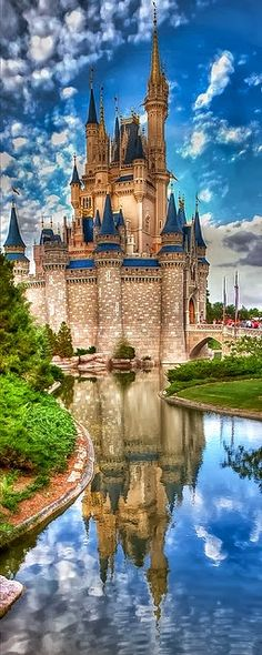 Presenting The Wonder: Disney Castle!