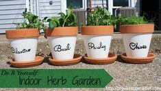 DIY Herb Garden- Brooke: Not On a Diet