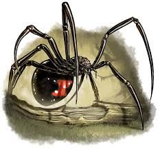 pathfinder spider - Google Search