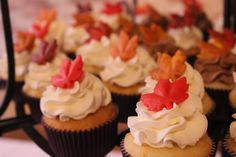 Cute fall cupcakes for a wedding reception at The Goei Center.