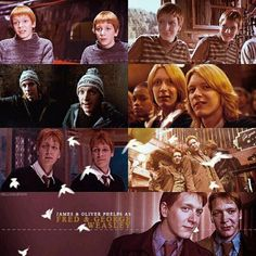 James & Oliver Phelps ♥