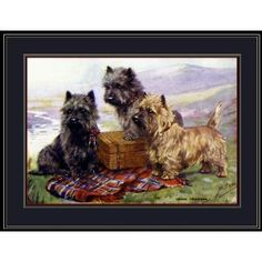 Picture Print Cairn Terrier Puppy Dogs Art