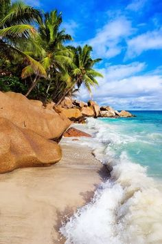 Seychelles Self Catering Beach Bungalows and gites Mahe Island Seychelles. Ideal place to stay in the Seychelles. Places Around The World, The Places Youll Go, Places To See, Places To Travel, Around The Worlds, Travel Destinations, Travel Tips, Dream Vacations, Vacation Spots