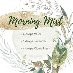 Very Helpful Essential Oil Techniques For essential oils blends recipes Young Essential Oils, Essential Oils Guide, Essential Oil Uses, Doterra Essential Oils, Yl Oils, Mojito, Mist Diffuser, Essential Oil Diffuser Blends, Young Living Oils