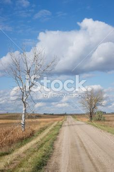 Desolate Country Road Royalty Free Stock Photo