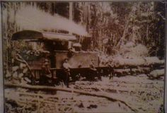 Logging train on Fraser Island, Queensland, ca 1930. Contributed by Liz Attard