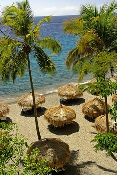 Anse Chastanet beach in Saint Lucia Island  #vacation