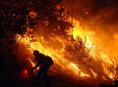 http://media.cleveland.com/nationworld_impact/photo/california-wildfires-2jpg-2ba436abbe035ace.jpg