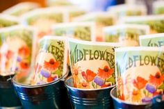 Wildflower seeds in a mini tin pail...cute  wedding favors