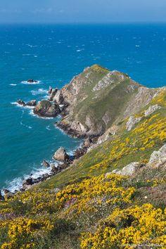Presqu'île du Cotentin, falaises du nez de Joburg