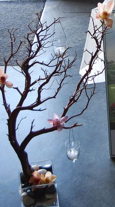 Manzanita branches with orchids would be awesome with some purple!!