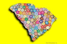 South Carolina Photo Map Maker. Place your own pictures on the South Carolina map and apply the shadow effect.