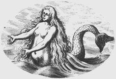 Fantasy Creatures, Sea Creatures, Mythical Creatures, Mermaid Origin, Vintage Mermaid Tattoo, Vikings, Sea Logo, Tarot, Mystery