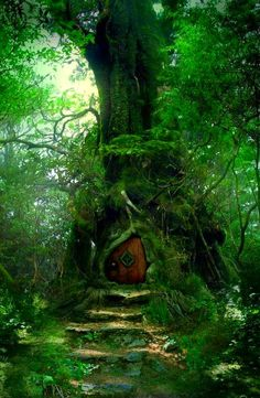 Beautiful Nature Forest Fantasy Ideas For 2019 Fantasy Witch, Fantasy Forest, Magic Forest, Forest Fairy, Fantasy Art, Dark Forest, Magic Fairy, Forest House, Fantasy Trees