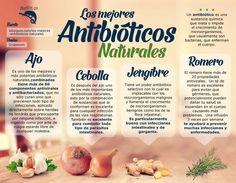 Los mejores antibióticos naturales - Infografías y Remedios. #antibióticos #salud #infografia #health