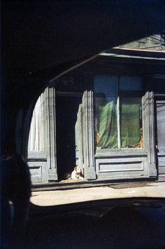 Dog in Doorway. Paterson. Saul Leiter, 1952