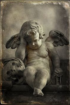 Weeping Angel | Flickr - Photo Sharing!                                                                                                                                                                                 More