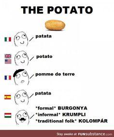 Easy language I say
