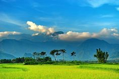 Beautiful afternoon at the foot of Hoang Lien Son mountain range in Than Uyen.