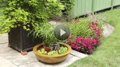 Create a small water feature for your patio. All you need is a container fountain kit, a watertight container, and a few water-loving plants./