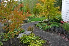Asian-inspired wildlife friendly garden - traditional - landscape - portland - Visionscapes NW Landscape Design