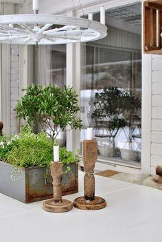 Hannas träljusstakar plåtlåda örter olivträd uterum