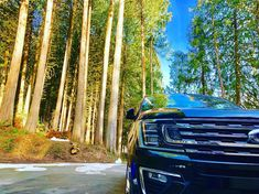 Adventures in a brand new Ford Expedition please!  #Regram via @woodsofpugetsound New Ford F150, Car Ford, Ford Gt, Ford Trucks, New Ford Expedition, Cash Program, Best Family Cars, Rear Wheel Drive, Ford Motor Company