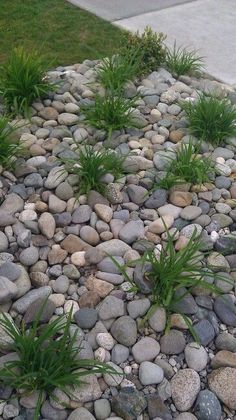 Replace front yard flower beds with river rock