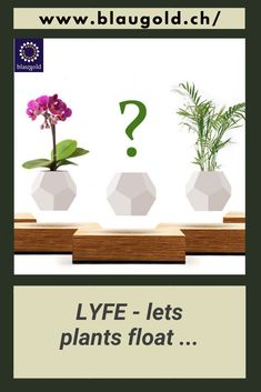 Description  Floating pot made of white silicone with drainage system Built-in magnet system lets the LYFE float and rotate The constant rotation provides the plant with 360 ° light The base consists of oak wood that has been sustainably forested in Sweden Incl. Setup assistant and user manual (in English, support under contact).