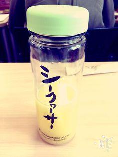 시콰사 주스?? 일본 과일인데 귤보다 훨씬 시큼하고 달다. 갈증해소에 진짜 좋당